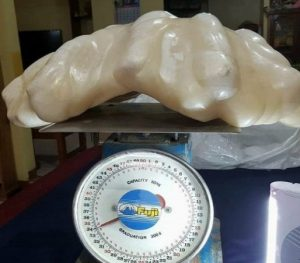 La perla más grande del mundo